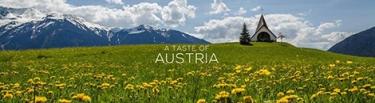 taste austria portada timelapse